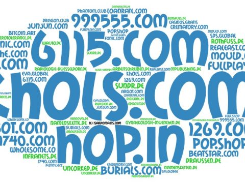 Domainhandel Top20 Domain Sales Report 2020 KW20/KW21