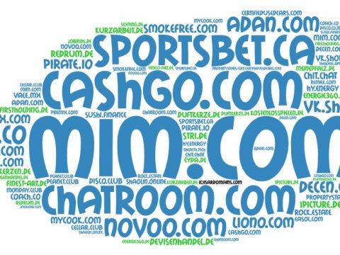 Domainhandel Top20 Domain Sales Report 2020 KW48/KW49